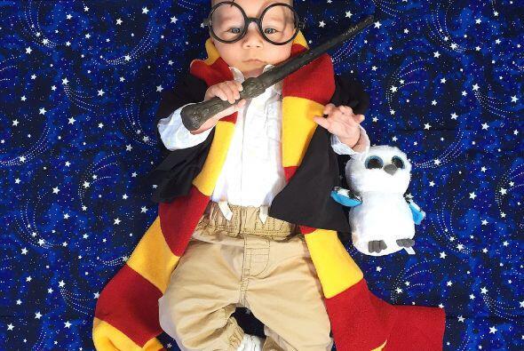 Harry Potter listo con su lechuza bebé, ¿no es lo más dulce?
