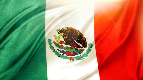Viva México2