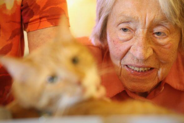 La interacción entre los animales y los seres humanos podría ser de gran...