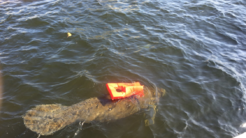 Las autoridades de rescate de Fort Lauderdale dicen que no han podido ay...