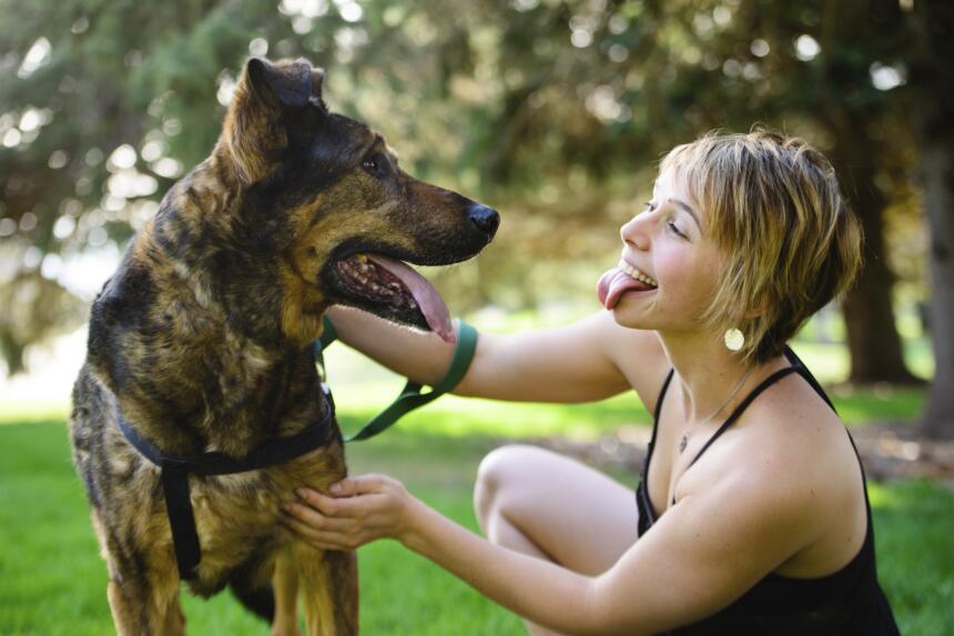 tu perro releva tu personalidad