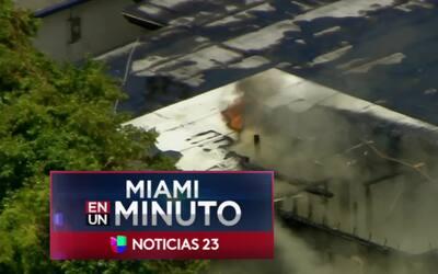 'Miami en un Minuto': un incendio en Hallandale Beach afectó una tienda...