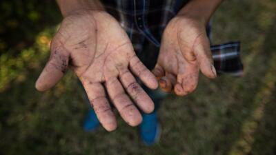 Lo que cuentan las manos de los campesinos indocumentados en #UnDíaSinInmigrantes