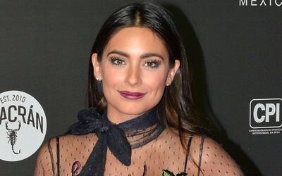 Ana Brenda podría regresar a las telenovelas con 'El Güero'...