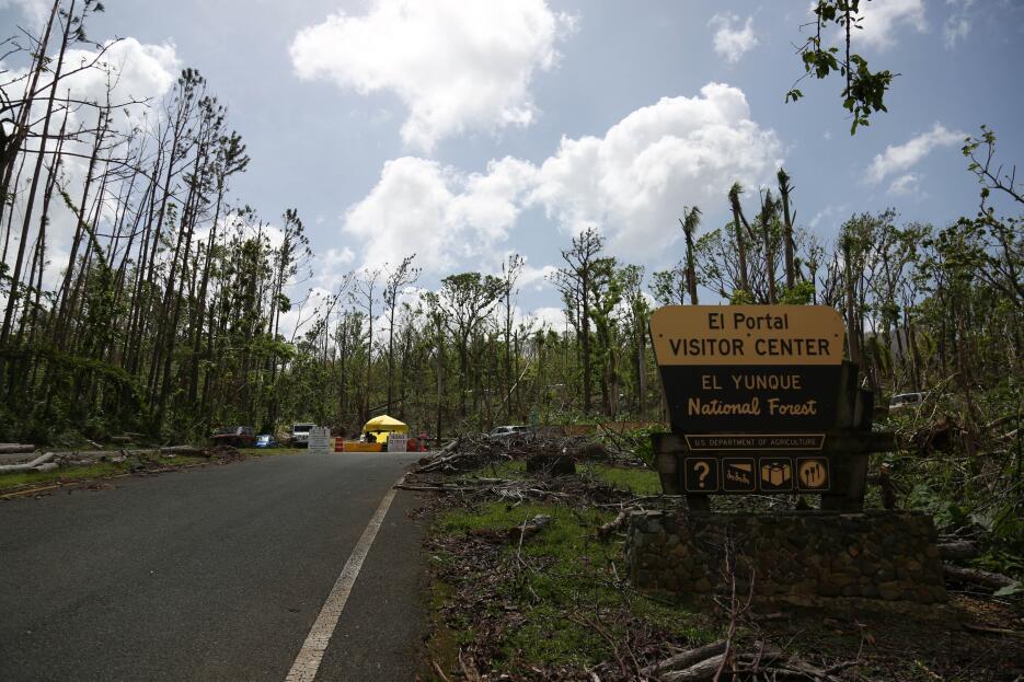 La entrada a El Yunque permanecerá cerrada por varios meses por los estr...