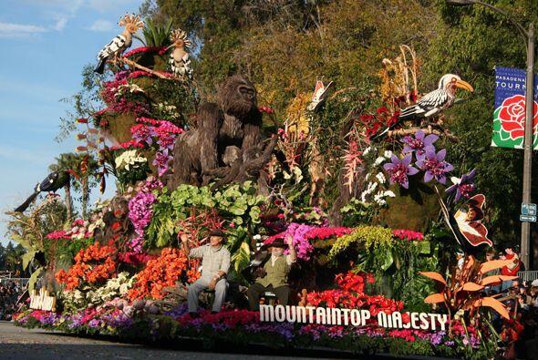 Un tributo a las majestuosidad natural de los parajes tropicales y selvá...