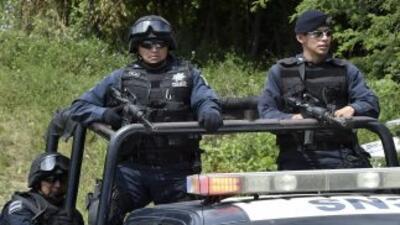 Elementos de la Policía Federal resguardan la zona donde fueron halladas...