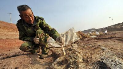 Arqueólogo chino en plena faena.