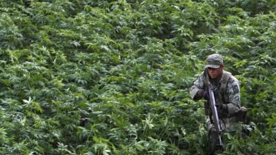Testigo da detalles nunca antes contados de cuando 'El Chapo' estuvo escondido en la sierra