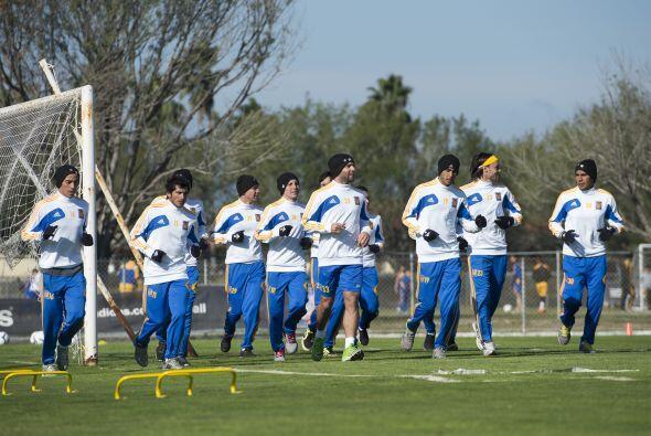 Un año de metas incumplidas tuvieron los Tigres de la UANL en este 2013,...