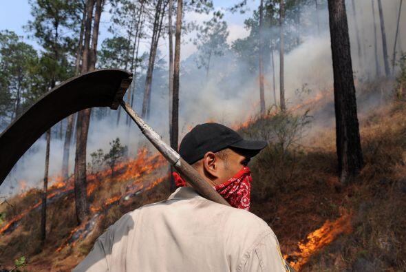 La condición se ha agravado con algunos incendios forestales.