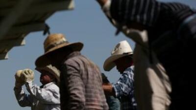 Todos o parte de los 30 estados afectados por la sequía están en la list...