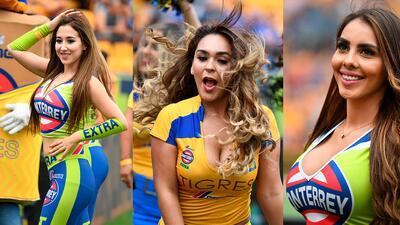 En fotos: Las porristas enamoran a los fanáticos en el juego Tigres - Toluca