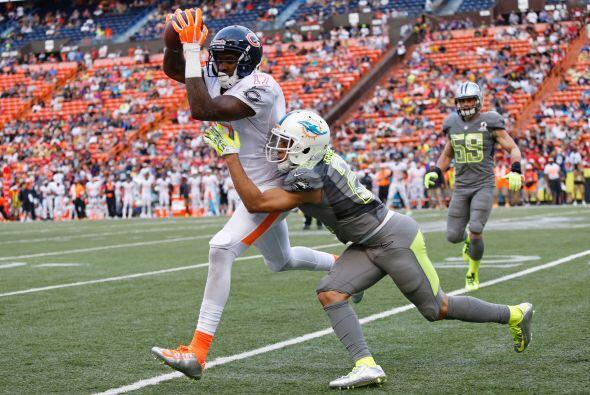 #95 Brent Grimes, Miami Dolphins  (AP-NFL).