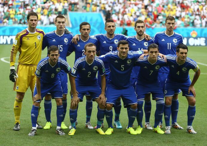 Bosnia y Herzegovina (Brasil 2014)
