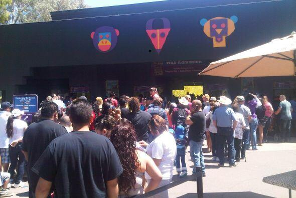 dia ninos arizonaaUnivision Arizona celebró el Día de los Niños a lo gra...