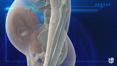 Así funciona el primer marcapasos fetal que será probado en humanos