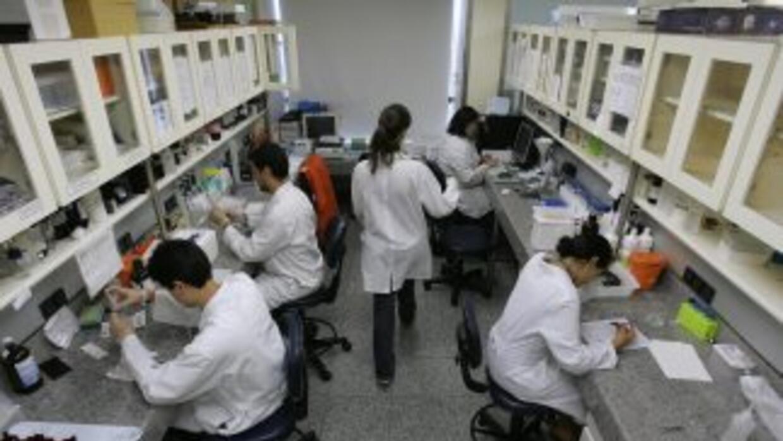 El pacto de colaboración en el terreno científico y tecnológico con Bras...