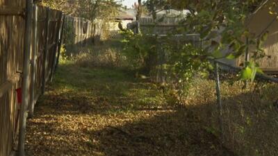 Dueño de una casa en Rowlett denuncia que un problema con el drenaje podría afectar la estructura