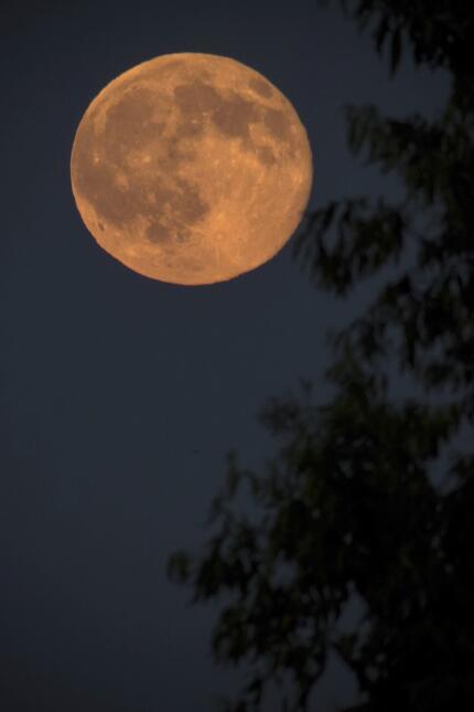 """En el Hemisferio Sur le dicen la """"luna de la noche larga"""". En esta fotog..."""