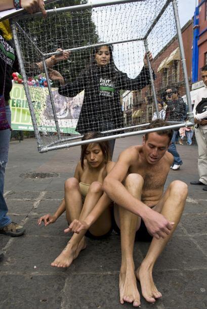 La representación de la jaula se llevó a cabo desde temprana hora y el o...