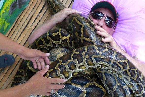 El zoológico de la ciudad de Cebú, en filipinas, ofrece es...