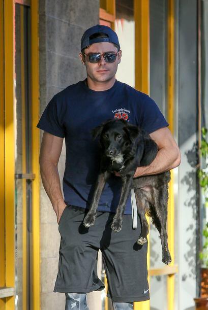 ¡Ahora el perro necesita unos lentes para estar a la moda como su dueño!