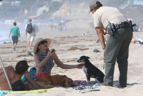 Por lo que sentó con sus mascotas a descansar, pero al parecer, los perr...
