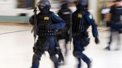 La Familia Michoacana ha recibido recientes golpes por parte de la polic...