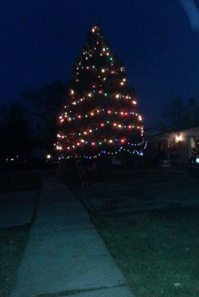 Fatima Padilla de Streamwood envió una foto de un gran arbolito de navidad.