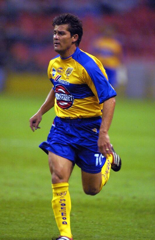 De allí pasó a Tigres hasta el 2001, hasta que regresó al Rebaño.