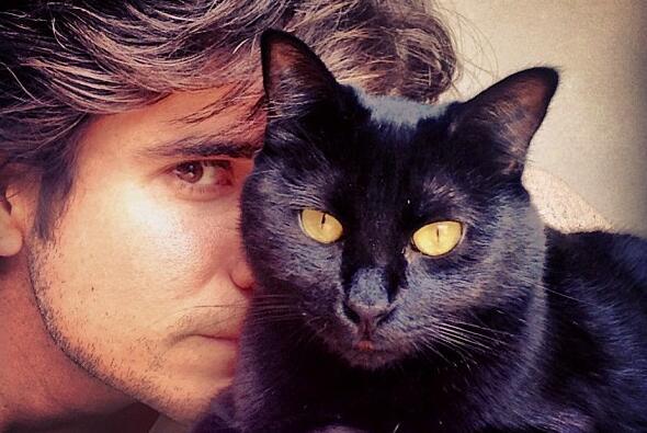 Daniel Arenas vuelve a las telenovelas