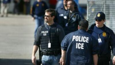Una operación del ICE de seis semanas dejó a 976 pandilleros detenidos....
