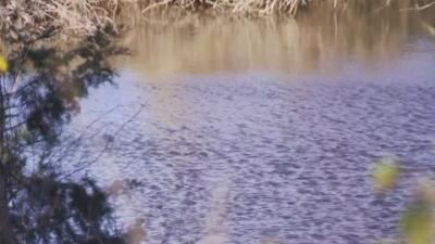 Identifican al hombre que se ahogó en un lago del condado de Tarrant este jueves