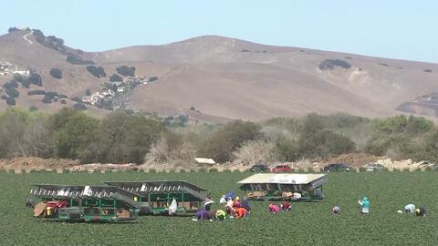 Agricultores latinos serán capacitados en mejoramiento de calidad y apro...