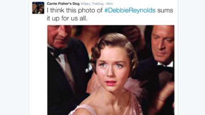 """""""No, la abuela no"""". El perro de Carrie Fisher vuelve a llorar, esta vez por Debbie Reynolds"""