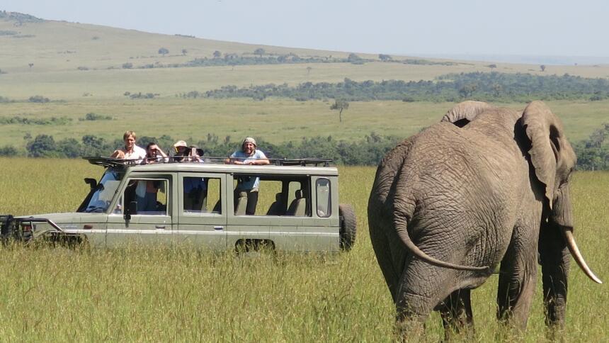 Nuestra querida Paula Arcila estuvo de vacaciones en África y tuvo una e...
