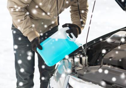 10 consejos para ayudar a los animales a resistir el frío istock-5311773...