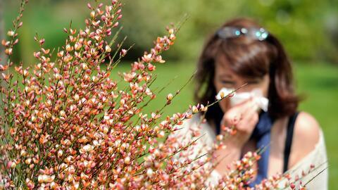 'Un Minuto Contigo': ¿Cómo minimizar los síntomas de las alergias?