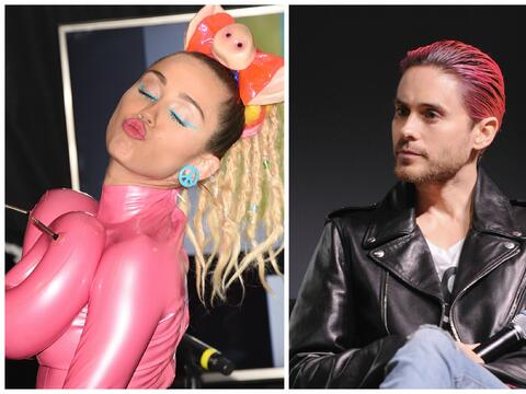 Miley Jared