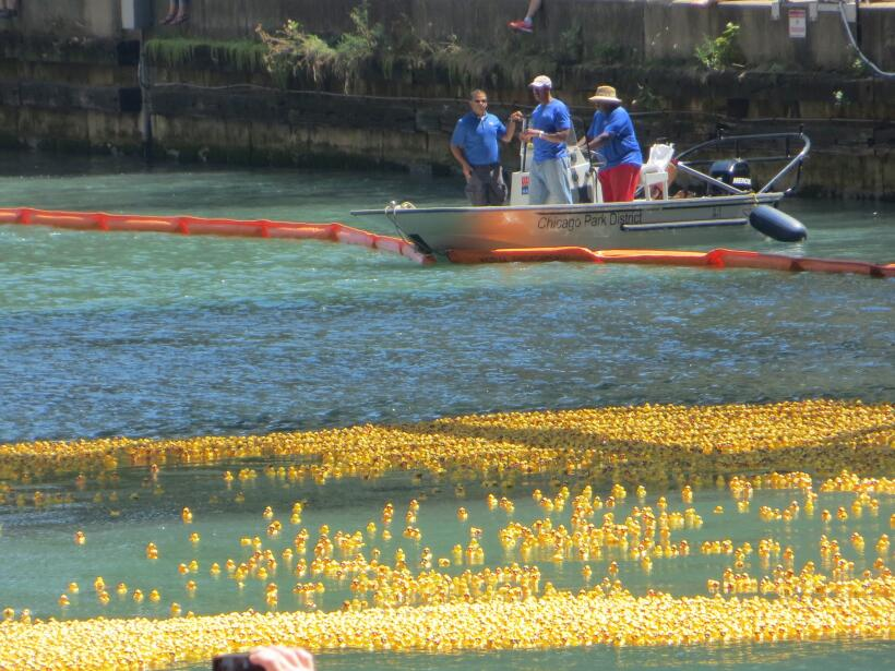 Carrera de patitos de hule