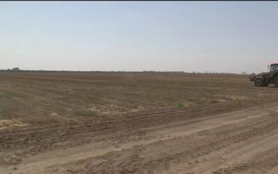 Desarrollan proyecto para combatir la sequía en CA
